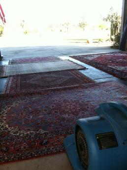 This Client Got A Free Garage Floor Cleaning Before I Cleaned Her Rugs, Because It Was The Only Place She Had Available At The Time. I Strive To Exceed My Clients Expectations.